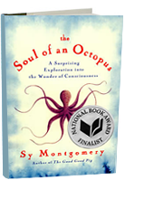 book-soul-of-an-octopus